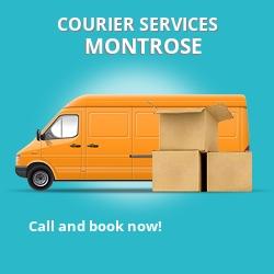 Montrose courier services DD11