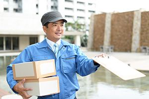 Lymm package delivery companies WA13 dhl