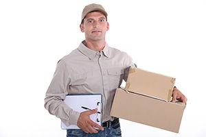 courier service in Denbigh cheap courier